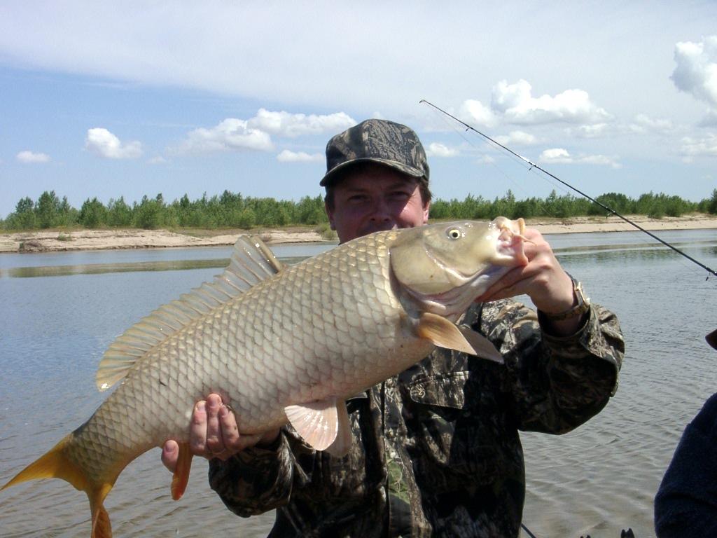 Ловля рыбы с илистого дна