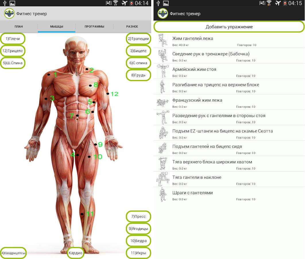 скачать приложение фитнес и здоровье