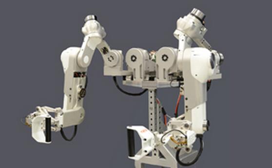 Плечевой сустав робота причины хруста суставов шеи