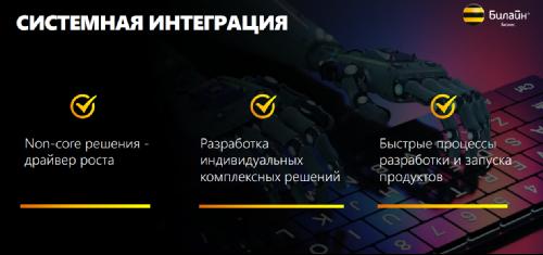 """Арташес Сивков, Вымпелком об итогах и планах подразделения """"Билайн Бизнес"""""""