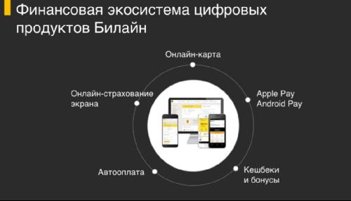 Финансовая экосистема цифровых продуктов Билайн