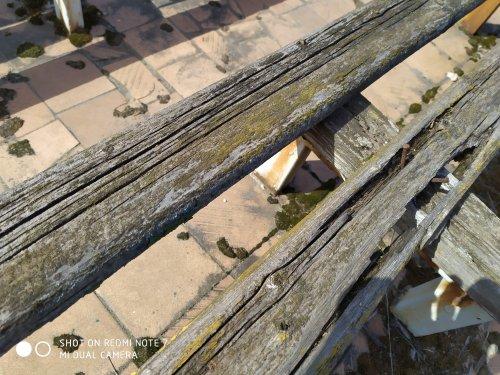 Тест: Живые снимки с камеры Xiaomi Redmi Note 7